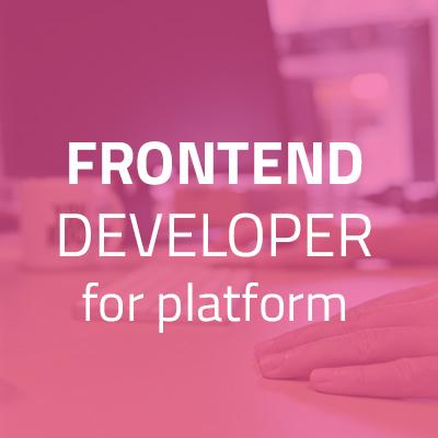 Frontend Platform Developer