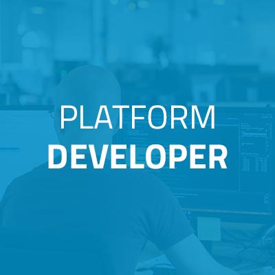 Platform Developer